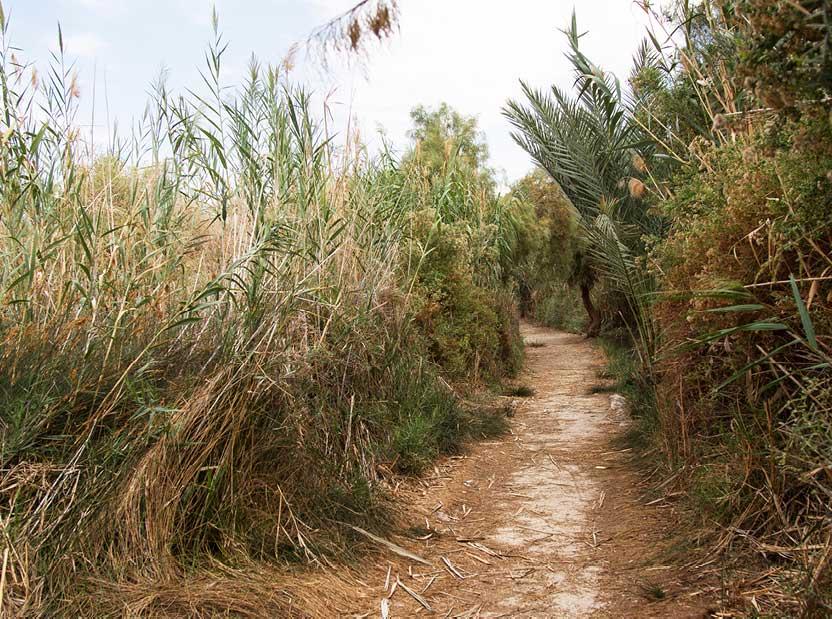 Walking-into-the-Hidden-Reserve